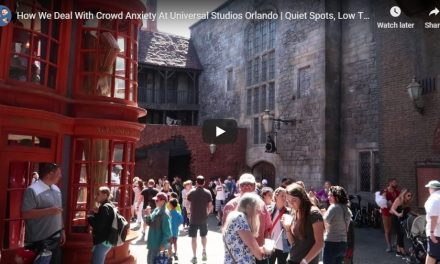 5 Tips for dealing with Summer Crowd Anxiety at the Theme Parks