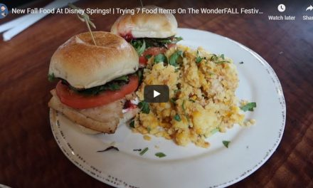 7 Meals You MUST Try during Disney Springs' Wonderfall Flavors Celebration
