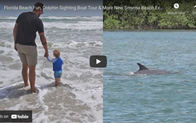 3 THINGS TO DO AT NEW SMYRNA BEACH